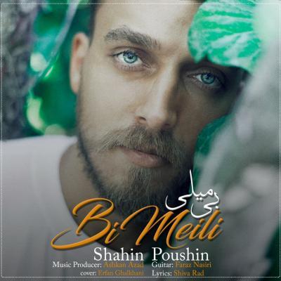 Shahin Poushin - Bi Meili