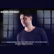 محسن شهبازی - حال و هواش
