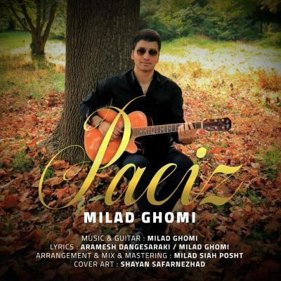 Milad Ghomi - Paeiz