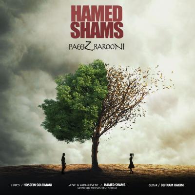 Hamed Shams - Paeiz Barooni