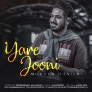 محسن حسینی - یار جونی