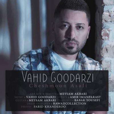 Vahid Goodarzi - Cheshmoon Asali