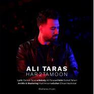 علی تاراس - هر دوتامون