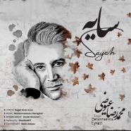 محمدرضا عیوضی - سایه