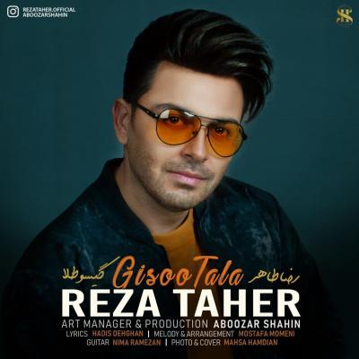 Reza Taher - Gisoo Tala