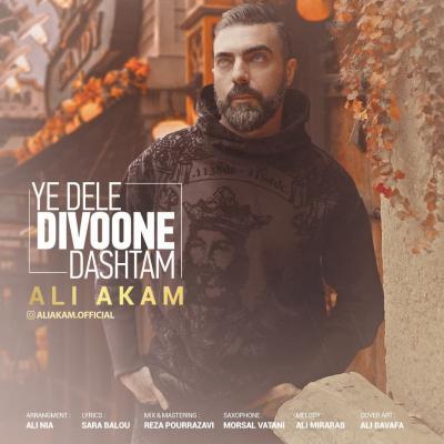 Ali Akam - Ye Dele Divoone Dashtam