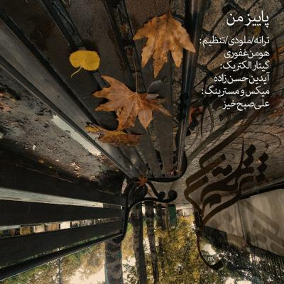 Hooman Ghafouri - Paeeze Man