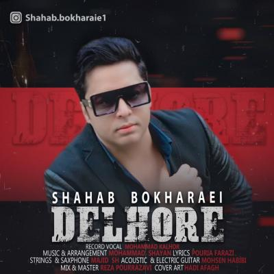 Shahab Bokharaei - Delhore