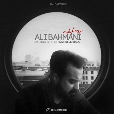 Ali Bahmani - Hess