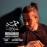 محمد محبیان - غم با تو نبودن