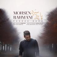 محسن بهمنی - پاییز سرد
