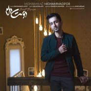 محمد محمدپور - دوست دارم