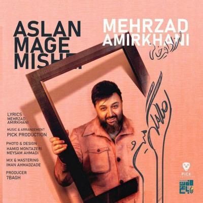 Mehrzad Amirkhani - Aslan Mage Mishe