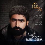 سعید کوشا - پریشانم