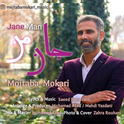 Mojtaba Mokari - Jane Man