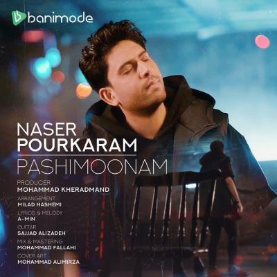 Naser Pourkaram - Pashimoonam