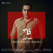محمد امینی - قاب
