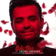 میثم ابراهیمی - گل رز