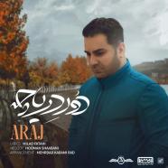 آراج - دور دریاچه