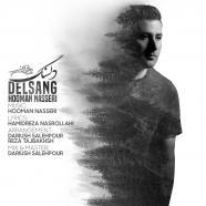 هومن ناصری - دلسنگ