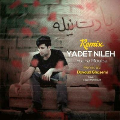 Younes Molaei - Yadet Nileh Remix (Ft Davoud Ghasemi)