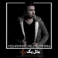 محمد رضا زمانی - مثل یه برگ