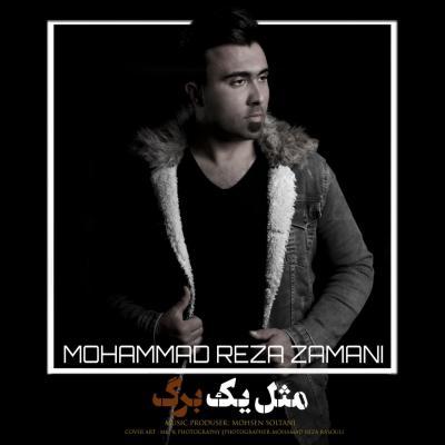 Mohammad Reza Zamani - Mesle Ye Barg