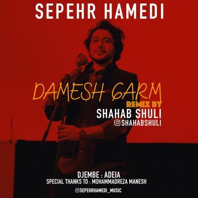Sepehr Hamedi - Damesh Garm (Shahab Shuli Remix)