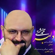 محمد حشمتی - دلبر