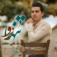حامی حامد - تنها نرو