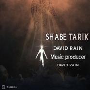 دیوید رین - شب تاریک