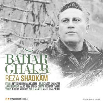 Reza Shadkam - Bahar Ghalb