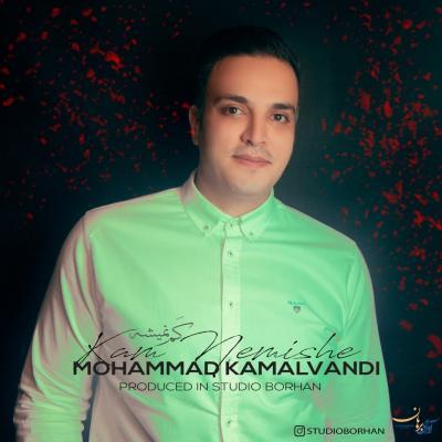 Mohammad Kamalvandi - Kam Nemishe