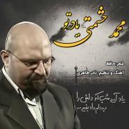 محمد حشمتی - یاد تو