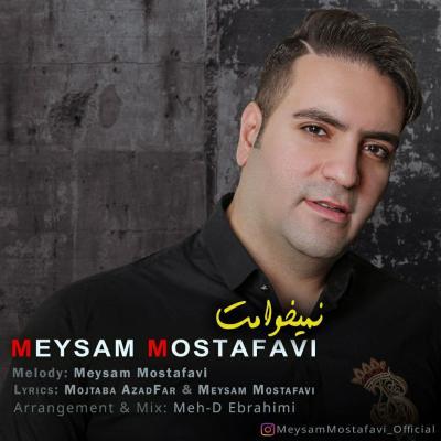Meysam Mostafavi - Nemikhamet