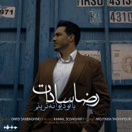 رضا سادات - با تو دیوانه ترینم
