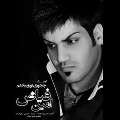 Amin Fayyaz - Chetori Toro Bebakhsham