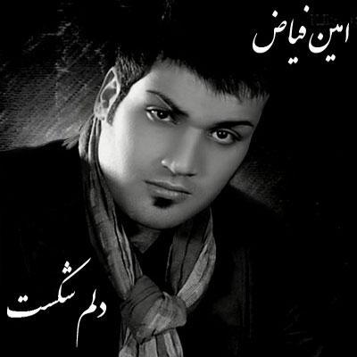 Amin Fayyaz - Delam Shekast