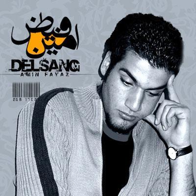 Amin Fayyaz - Delsang