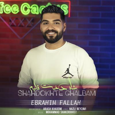 Ebrahim Fallah - Shahdokhte Ghalbam
