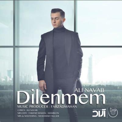 Ali Navab - Dilenmem