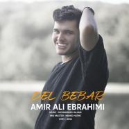 امیر علی ابراهیمی - دل ببر