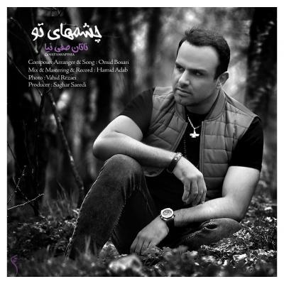 Natan Safinia - Cheshmhaye To