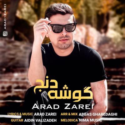 Arad Zarei - Gooshe Denj