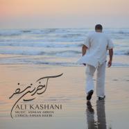علی کاشانی - آخرین سفر