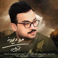 مجتبی علیمی - مرد دیوونه