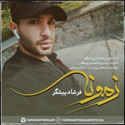 Alireza Hashemi - Shanse Bad