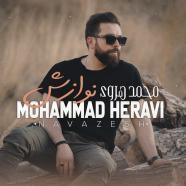 محمد هروی - نوازش