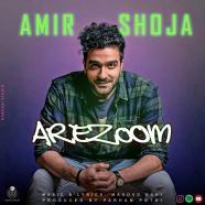حسام الدین سراج - عاشق کشی