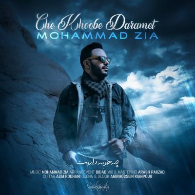 Meysam Jalali - Cheshmat